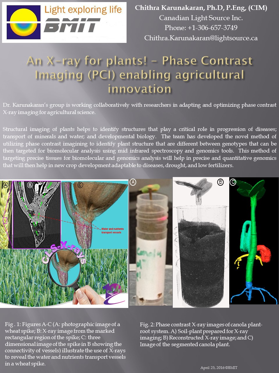 Phase Contrast Imaging (PCI) enabling agricultural innovation Image