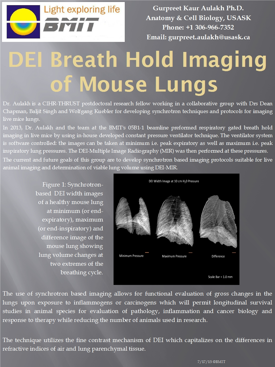 DEI Breath Hold Imaging Of Mouse Lungs Image