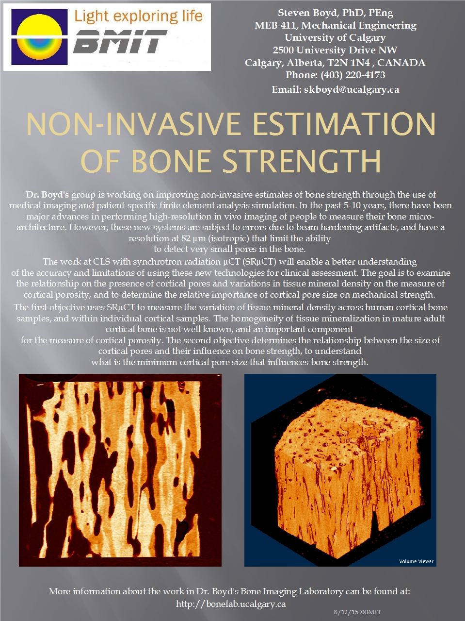 Non-Invasive Estimation of Bone Strength Image
