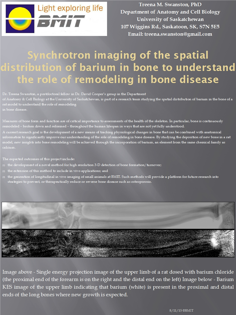 Synchrotron Imaging Of the Spatial Distribution of Barium in Bone to Understand the Role of Remodeling In Bone Disease  Image