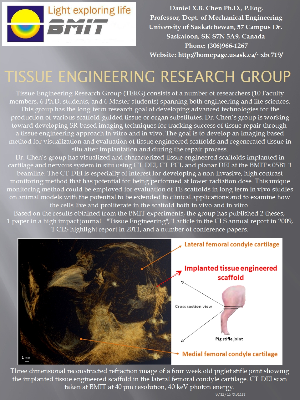 Tissue Engineering Research Group Image